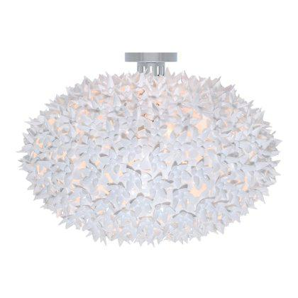 Bloom Round Ceiling Light Image